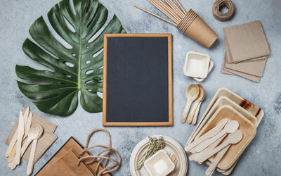 How to make your home eco-friendly this summer!